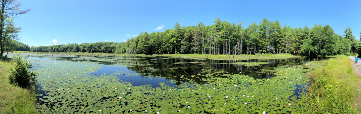 Beaver Lake Number 2