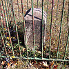 DC boundary stone NE4 - click for larger image