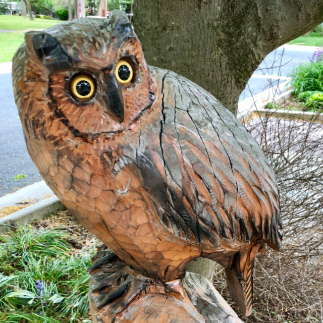 Kensington Childrens Library wood carving owl