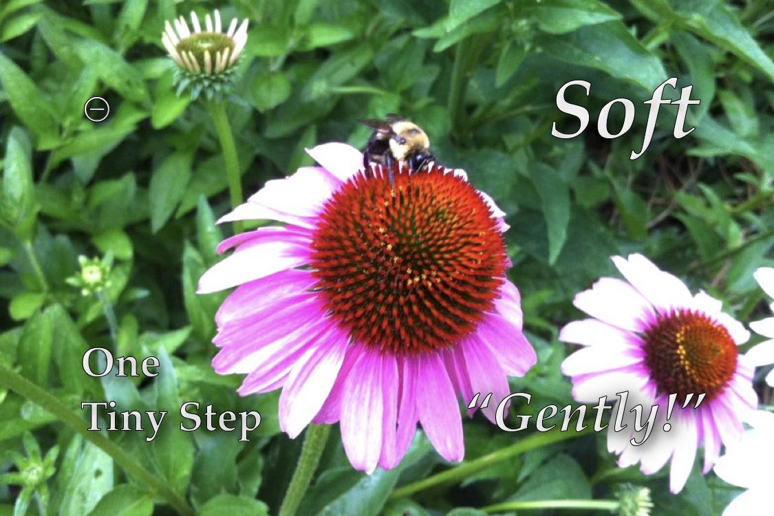 http://zhurnaly.com/images/OM/OM-0.6.032.jpeg