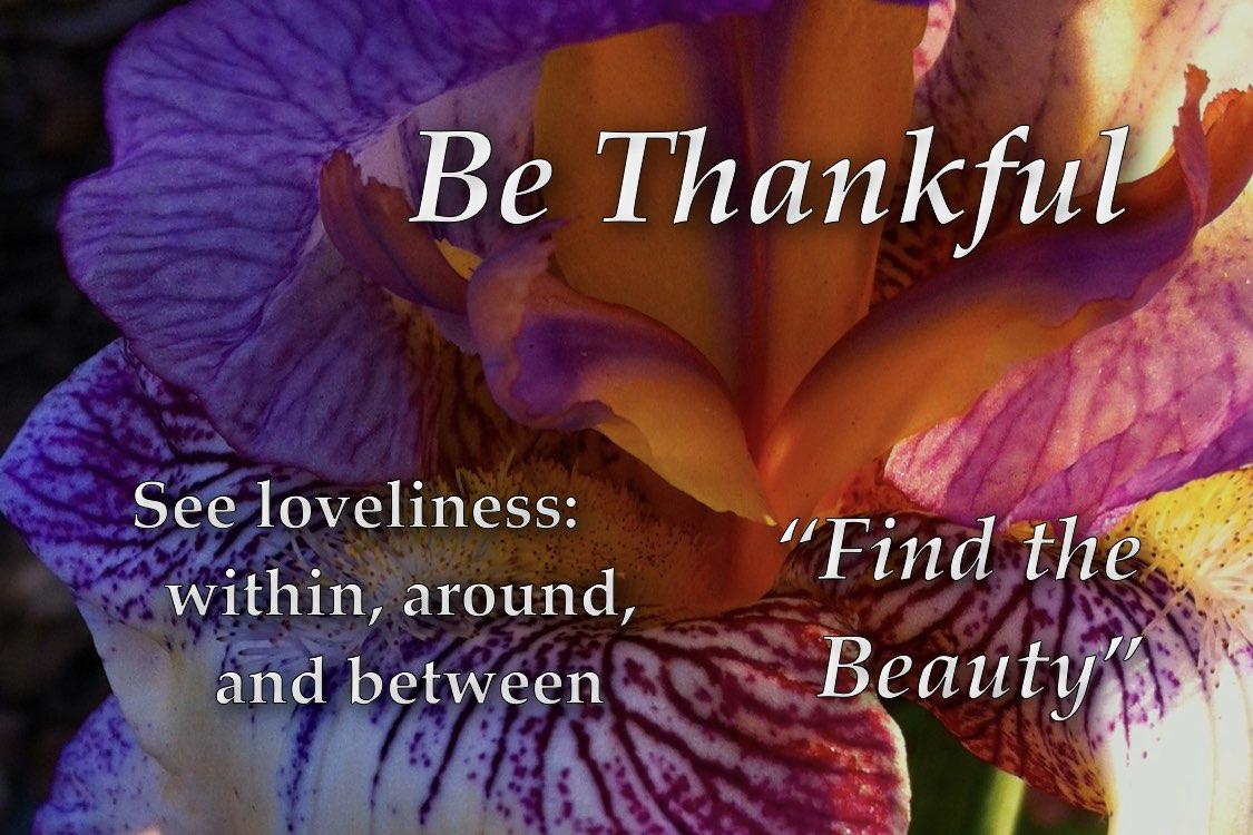 http://zhurnaly.com/images/Om/Om_-_Be_Thankful.jpg