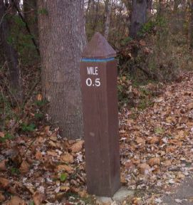 Mile 0.5 of Paint Branch Trail