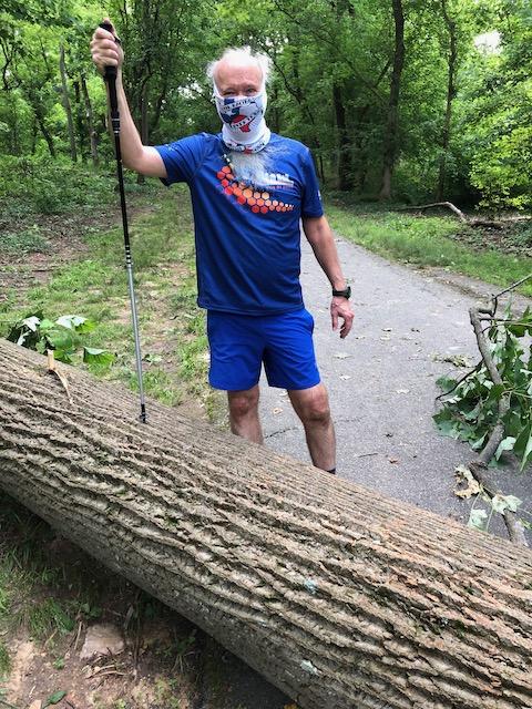 http://zhurnaly.com/images/run/Little-Falls-Trail_fallen-tree_z_2020-06-27.jpg