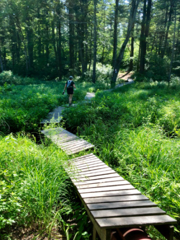 Dr Mary on swampy boardwalk - XTERRA French River trail run