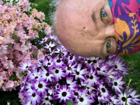 http://zhurnaly.com/images/run/flowers_z_2020-05-13.jpg