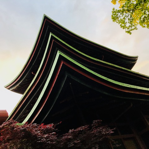 http://zhurnaly.com/images/run/national-park-seminary-pagoda_2020-05-14.jpg