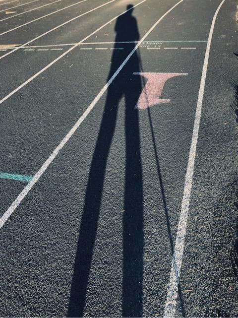 http://zhurnaly.com/images/run/running-track-lane-one-long-shadows_z_2020-07-09.jpg