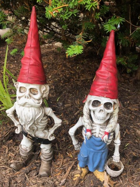 http://zhurnaly.com/images/run/skeletal-lawn-gnomes_2020-06-19.jpg
