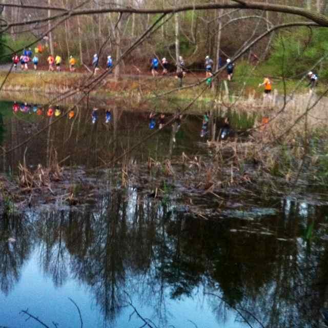 http://zhurnaly.com/images/running/BRR_2014_mile_01_reflected_runners.jpg