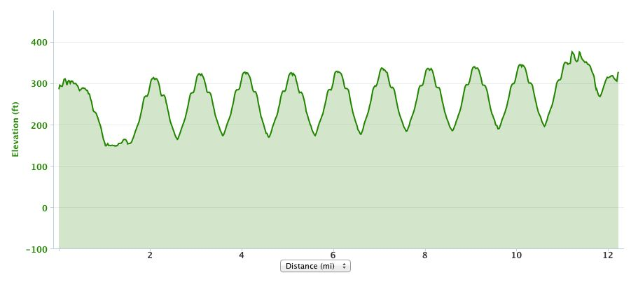 http://zhurnaly.com/images/running/Garmin_GPS_barometric_elevation_chart_2013-12-21.jpg