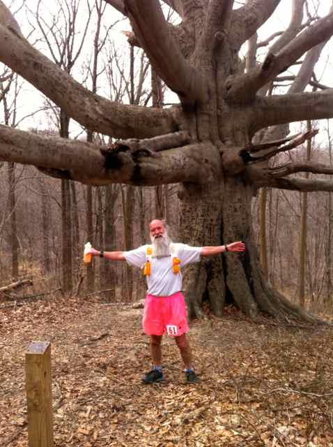 http://zhurnaly.com/images/running/HAT_2014_gnarly_tree_z.jpg