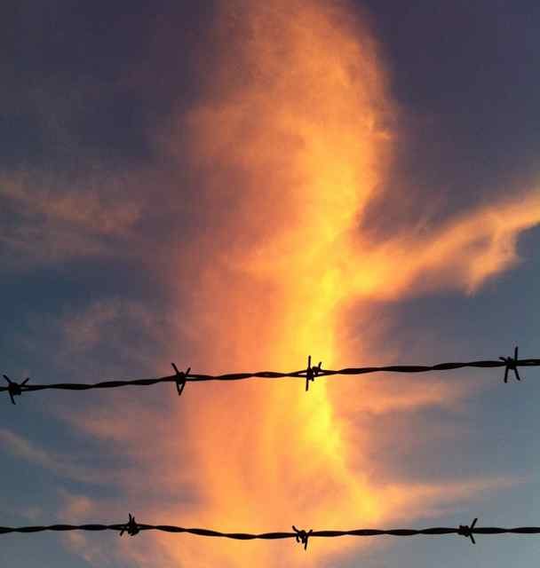http://zhurnaly.com/images/running/Kensington_barbed_wire_sunrise.jpg