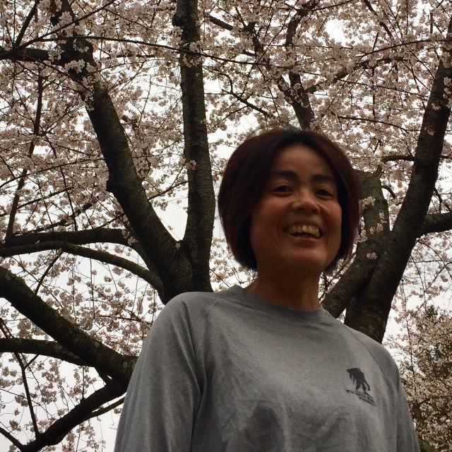http://zhurnaly.com/images/running/Kenwood_cherry_blossoms_Sakurako_Narita_2017-03-26_t.jpg