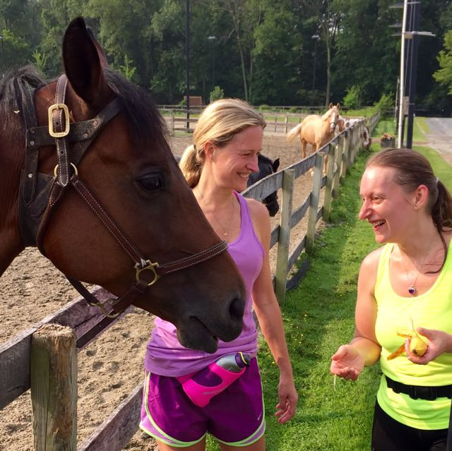 http://zhurnaly.com/images/running/Kery_Kristin_Meadowbrook_Stables_2015.jpg