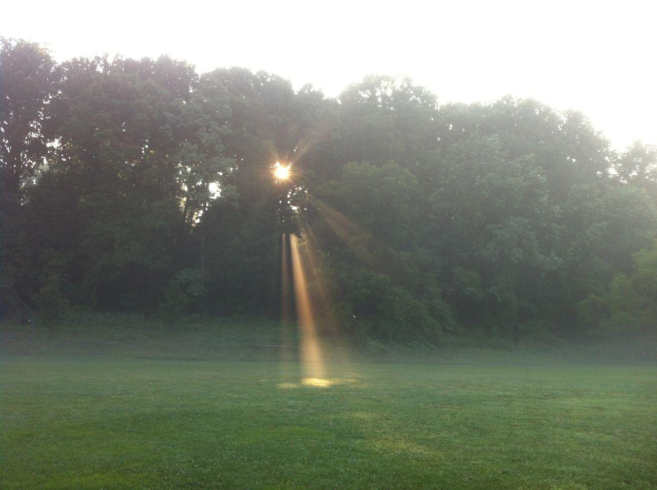 http://zhurnaly.com/images/running/Misty_Morning_Sunbeam_at_KenGar.jpg
