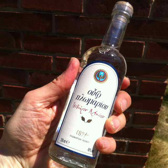 http://zhurnaly.com/images/running/Ouzo_found_near_NIH.jpg