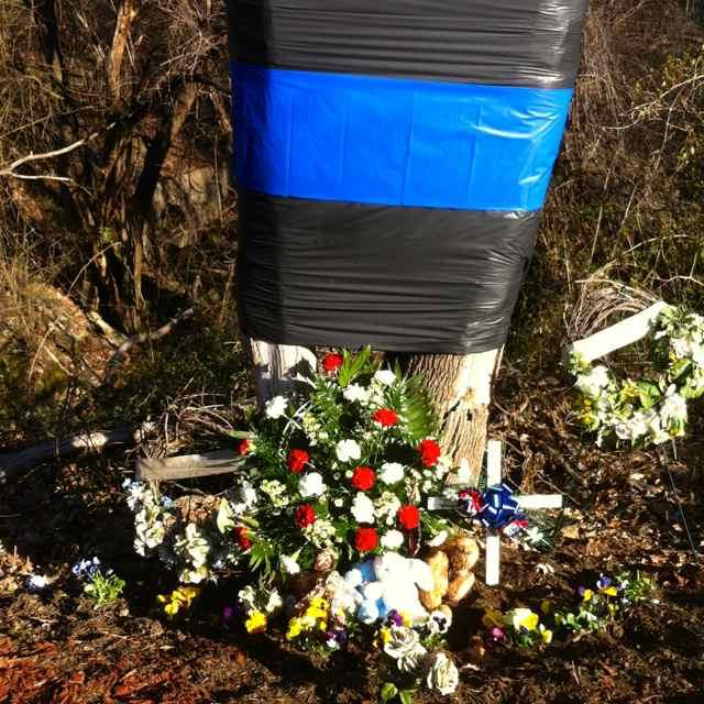 http://zhurnaly.com/images/running/Randolph_Rd_memorial.jpg