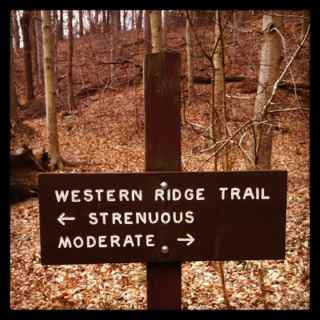 http://zhurnaly.com/images/running/Western_Ridge_Trail_choice.jpg