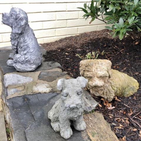 http://zhurnaly.com/images/running/three_kensington_lawn_dogs_2019-03-02_t.jpg