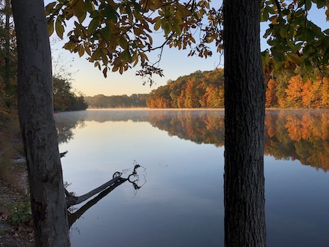 http://zhurnaly.com/images/walk/Black-Hill-Regional-Park_Little-Seneca-Lake_2020-10-17.jpg