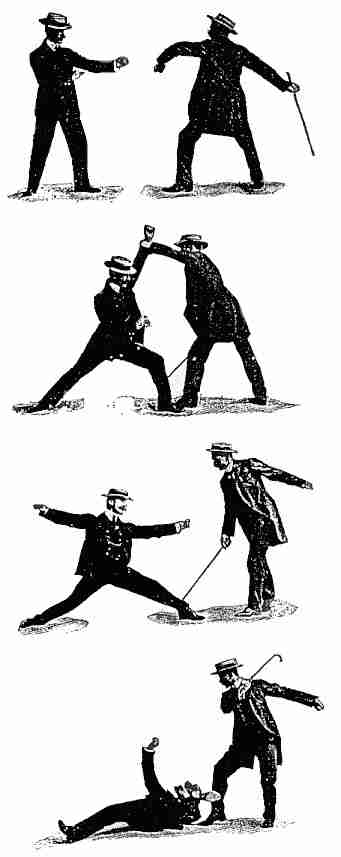cane fighting